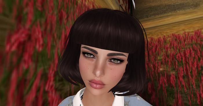 Picnic_006
