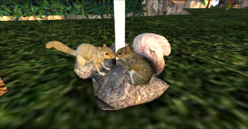Nuts_004