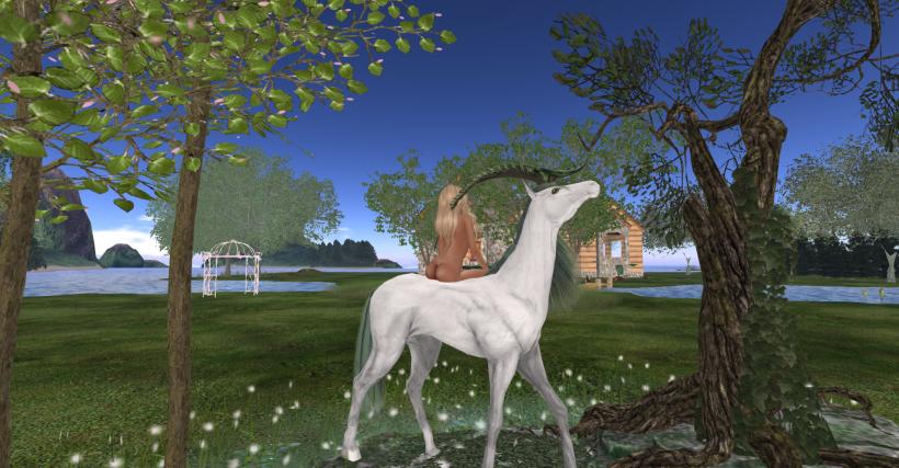Unicorn_002